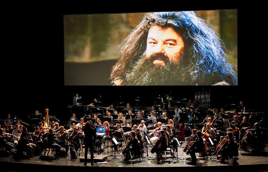 Date del concerto di Harry Potter a Roma e Milano