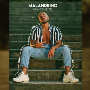 Malandrino è tornato 1