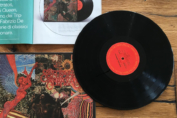 Vinyl: una rivista di musica con il filtro del vinile.